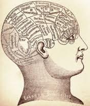 phrenologyhead