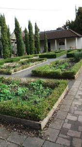 Roman garden Caerleon
